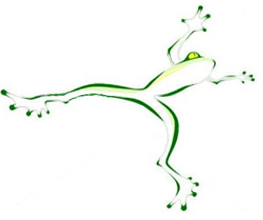 Leap ahead business consulting for Frog consulting